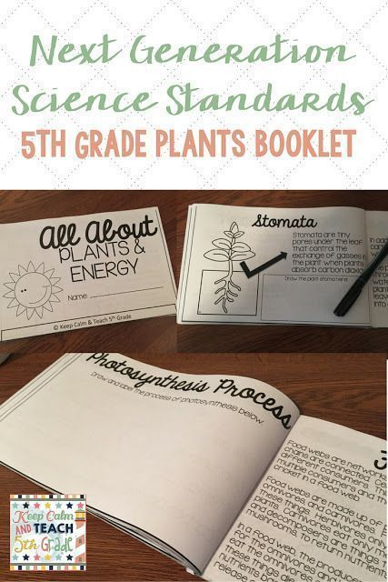 NGSS Aligned Book, Plants & Energy, 5th Grade Science