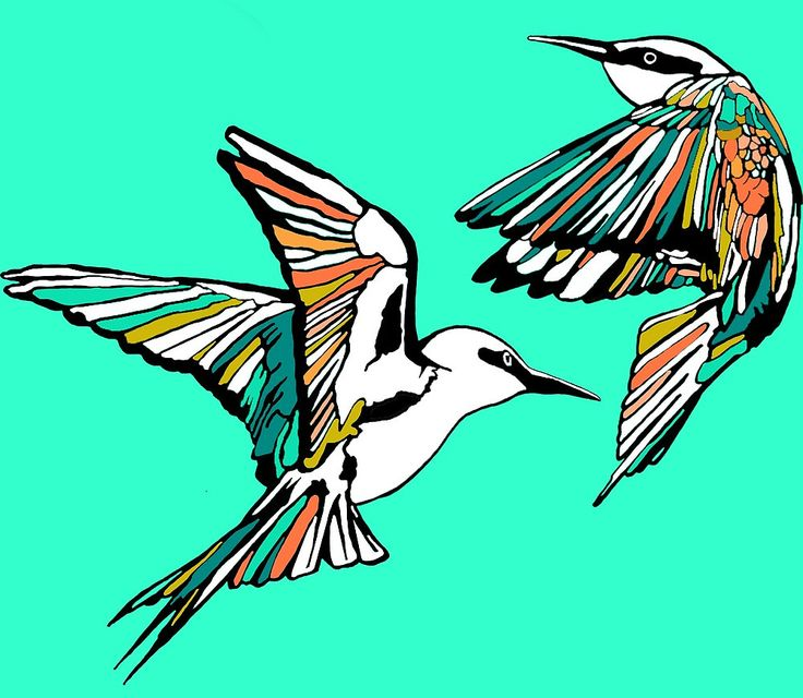 Minty Bee Eater Birds Giclée art print by Kerise Delcoure.  This design is a bold and graphic depiction of two Rainbow Bee Eater birds in flight.The original artwork for this design is a pen and ink drawing which was graphically painted. Available at https://society6.com/kerisedelcoure and https://www.redbubble.com/people/kerisedelcoure.
