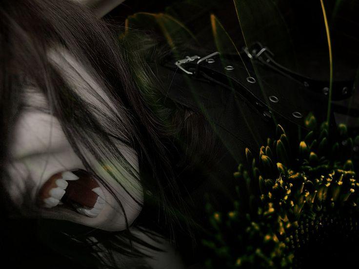 http://2.bp.blogspot.com/_ucIudYG-MaE/TEb408nCDvI/AAAAAAAAADM/AcsD7yNOgQ8/s1600/fotos_vampiros_reales_08.jpeg