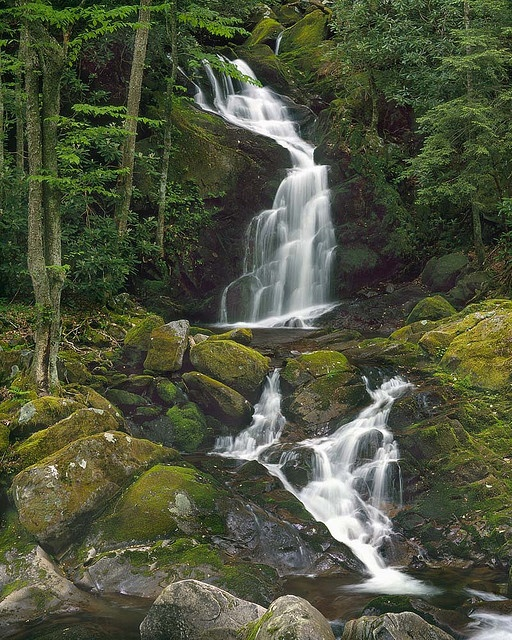 Mouse Creek Falls - North Carolina: Mice, Mouse Creek, Big Creek, Creek Trail, Creek Fall, Columbia Rivers Gorge, Valley,  Vale, Photo