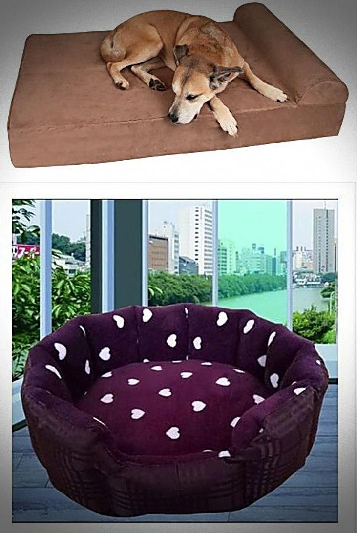 Cheapest Doggie Beds For Small Large Dogs You Found It Dogs Stairs For Beds Dog Steps For Beds Or Even See Deta Cool Dog Beds Cute Dog Beds Kuranda Dog Beds
