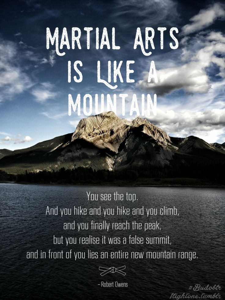 Martial arts quotes not just for martial artists. Karate Sensei's Daughter —