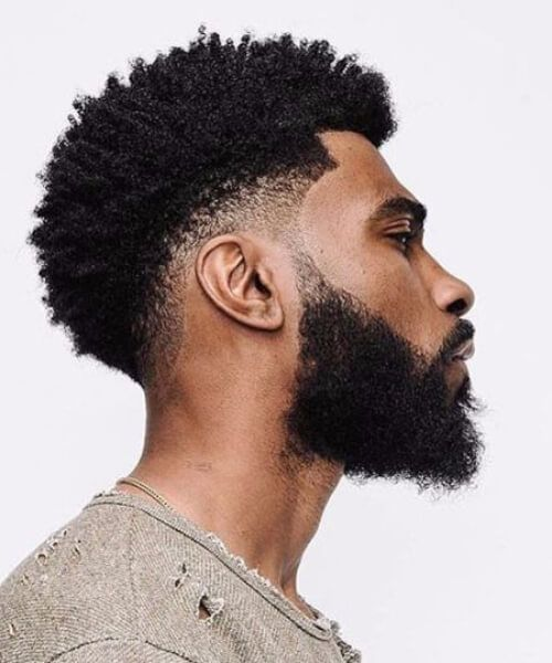 Black Men Hairstyles Curly Natural Undercut Beard Corte
