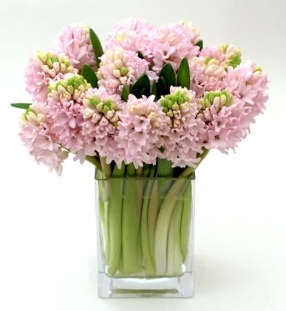 15 best modern monochromatic flowers nyc images on pinterest flower arrangements flower. Black Bedroom Furniture Sets. Home Design Ideas