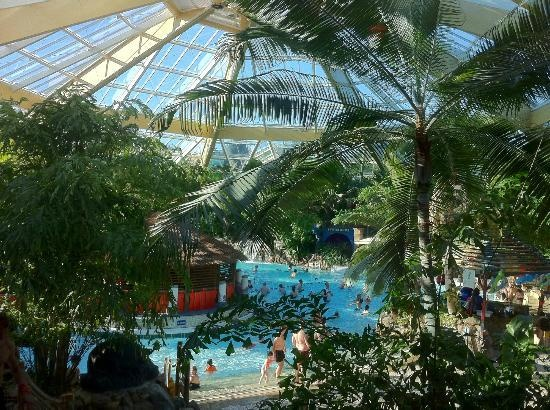 Elveden Forest Center Parcs: subtropical swimming #CPFamilyBreaks All my kids have learned to swim pootling about at Centerparcs. It's perfect. Can't believe we are down to only one yellow jacketed kid now!