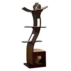 Guide d'achat: Accessoires pour chat