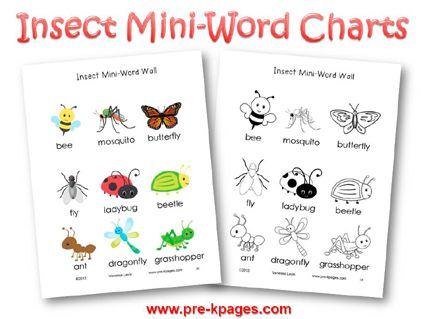 Insect Literacy Preschool LessonsPreschool ThemesPreschool