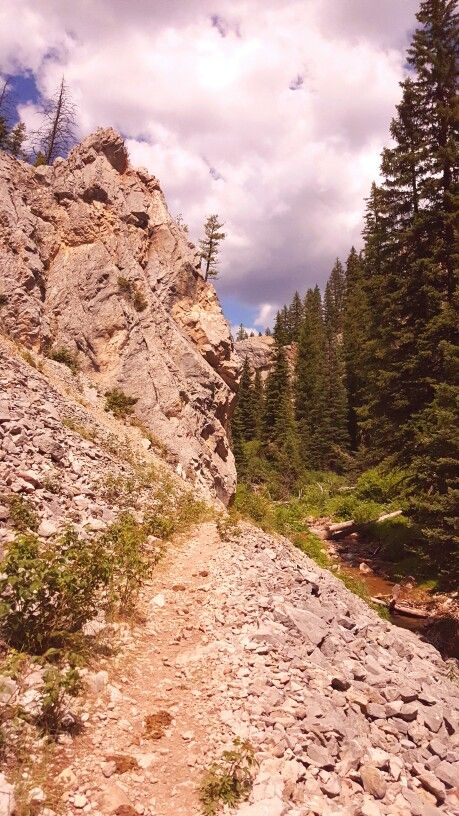 Red Canyon Trail, Gallatin Nat'l Forest, Montana