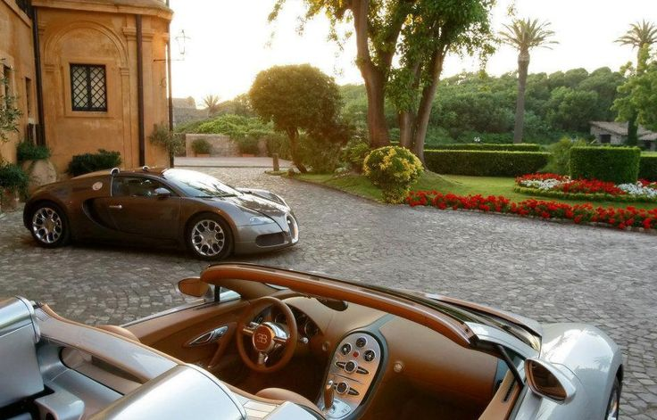 Wealth and Luxury