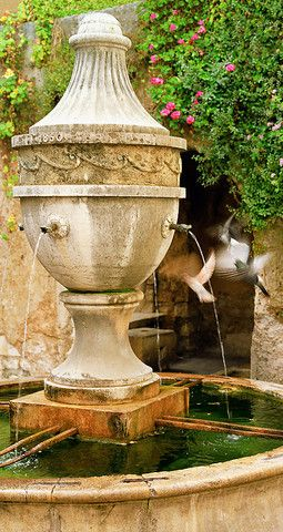#French #Gardens - Fountain Flight - Saint Paul de Vence (Provence), France http://www.thefrenchpropertyplace.com
