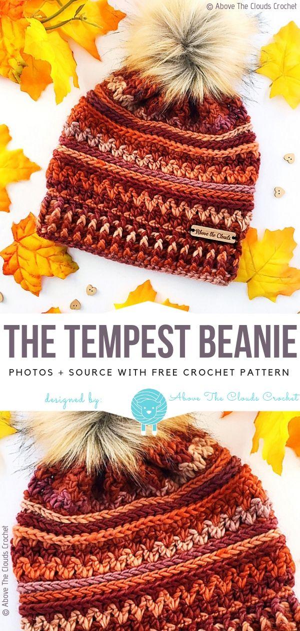 The Tempest Beanie Free Häkelanleitung