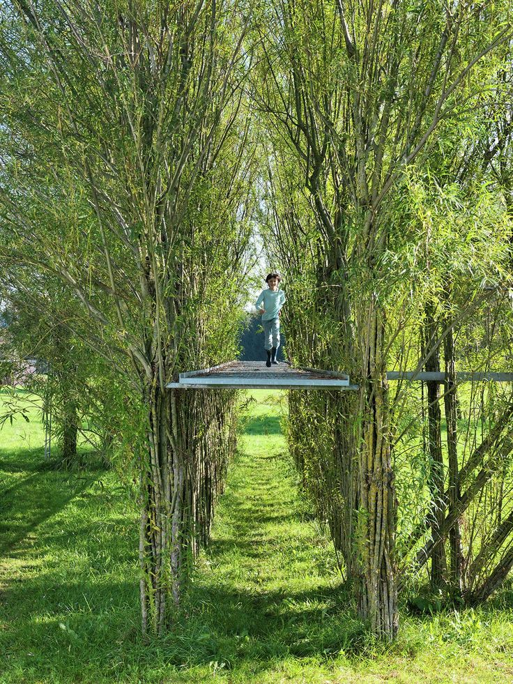 Image 1 of 8. Willow footbridge summer 2012. Image © Ferdinand Ludwig