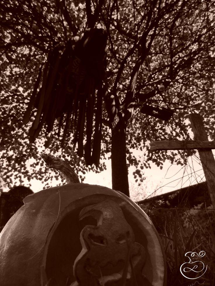 Pumpkin & Dementor  Citrouille & Détraqueur