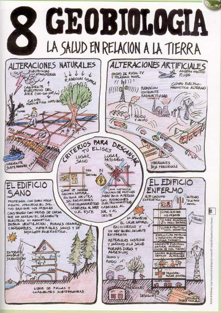 Conceptos de bioarquitectura - GEOBIOLOGIA @lacocovilla