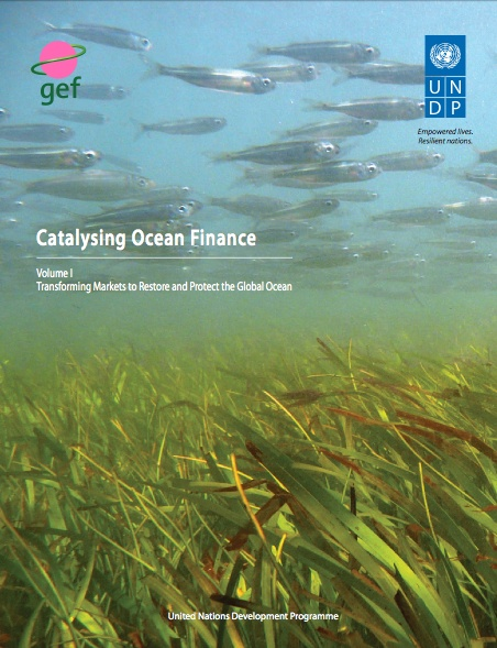 United Nations Development Programme (UNDP) and Global Environment Facility (GEF) produced a report presenting three major instruments that have proven highly effective at promoting science-based, long-term integrated planning and barrier removal to transform markets and create sustainable productive use patterns of coastal and ocean resources over the past 20 years.