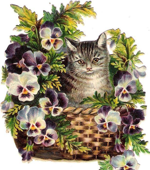 Oblaten Glanzbild scrap die cut chromo Katze cat chat Korb basket Helena Maguire: