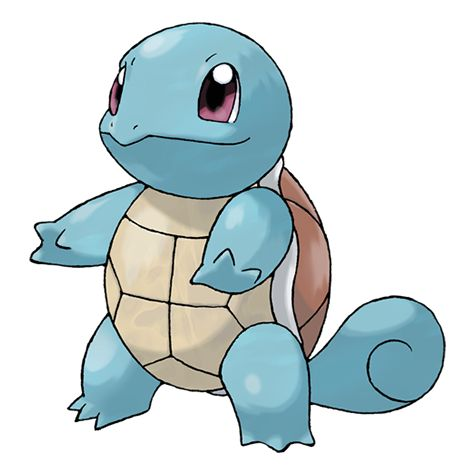 Squirtle looks like a turtle for some reason. WHY!?!?!?!?!?!????!?!?!
