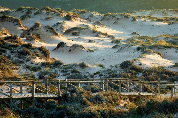Parque Natural do Sudoeste Alentejano e Costa Vicentina  Foto por Turismo do Algarve