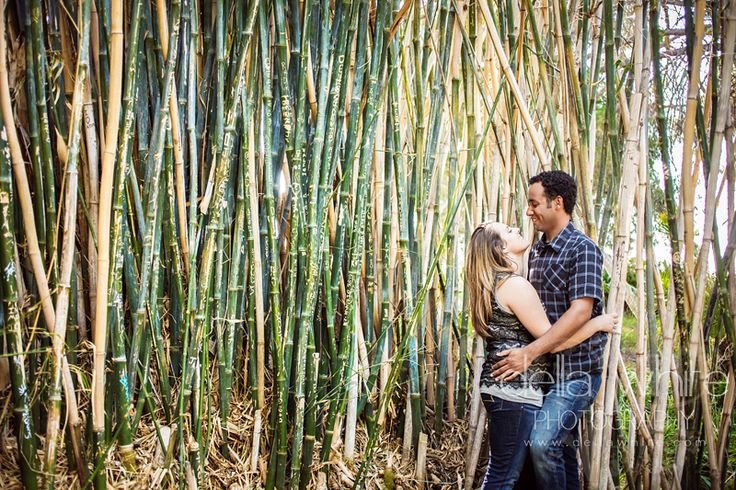 Enagement Session At Ucr Botanic Gardens In The Bamboo Della White Photography Riverside