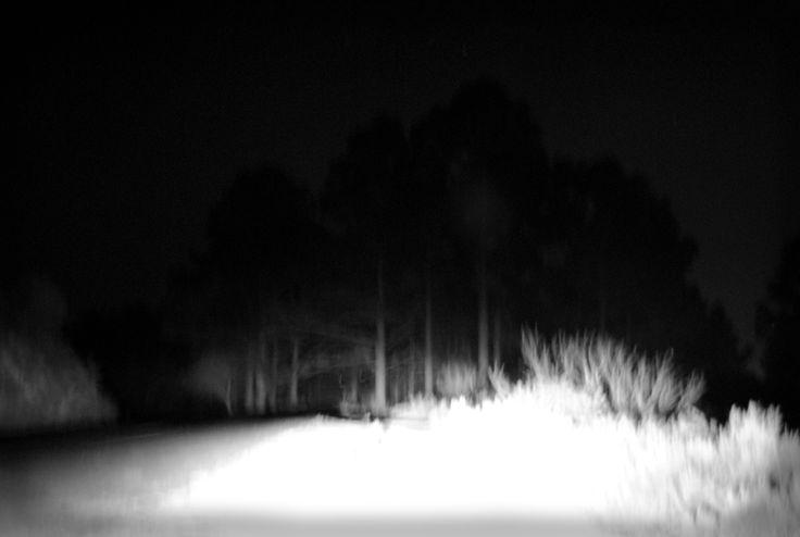 """Michael Tietz-Geldenhuys """"Nocturne"""""""