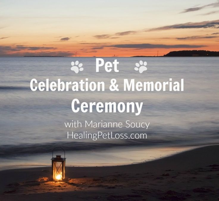 Saturday 15 July 2017 ! Join us for a Pet Celebration & Memorial Ceremony. Learn more and register for a day of love and light at http://healingpetloss.com. I look forward to seeing you and your angel animal(s) there :-) Blessings, Marianne Soucy, Healing Pet Loss #petloss