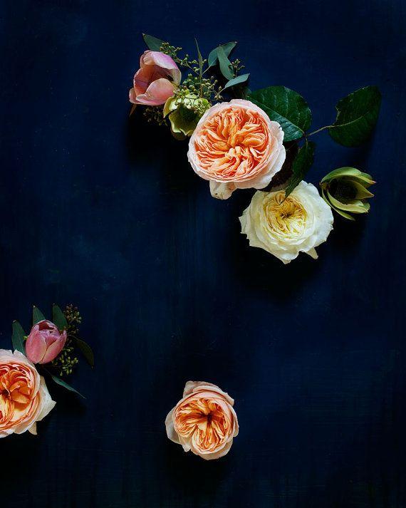 Dark botanical study by Kari Herer