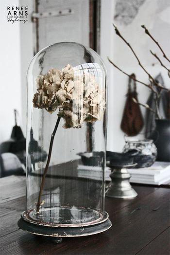 ドライフラワーを一本入れただけのガラスドーム。花瓶代わりのガラスドームでいつもと違う雰囲気に。