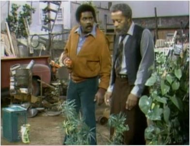 Sanford and Son Cast | Sanford and Son - 04x11 Fred's Treasure Garden