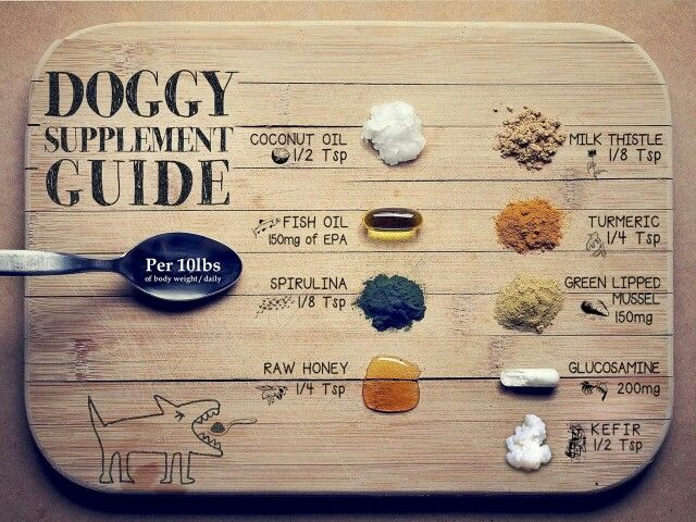 Doggy Supplement Guide ; dog health ; canine nutrition