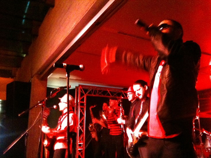 Attended a concert by the band Rotfront at Akvarium Club in Budapest in February ... great German band!