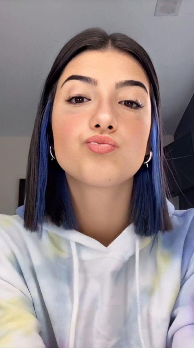 Charli D Amelio In 2020 Hair Color Streaks Hair Inspo Color Hair Inspiration Color