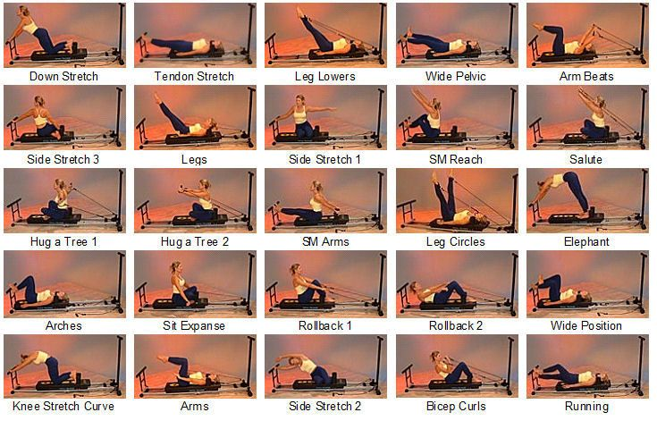 Pilates Power Gym Exercises Examples | Total Trainer Pilates Pro® Reformer: FitnessScape