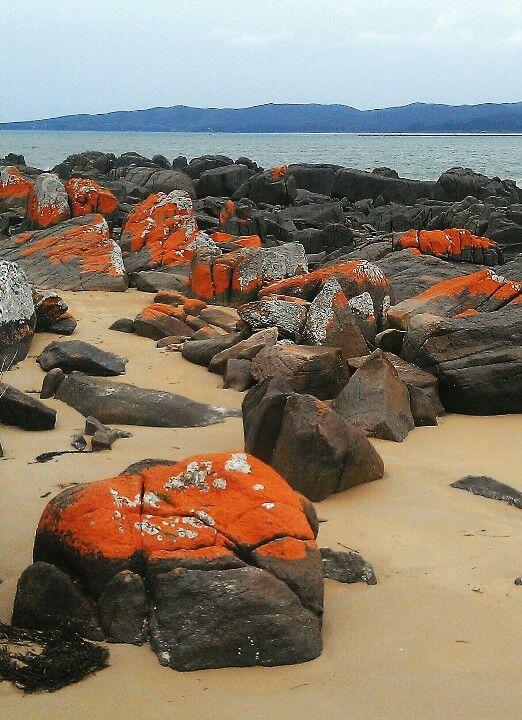 Hawley Beach in Tasmania, Australia