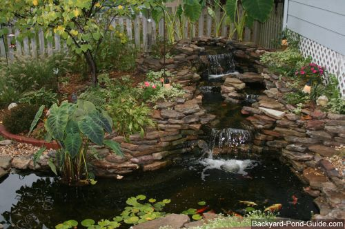 Backyard waterfalls and ponds backyard pond will give for Simple koi pond design
