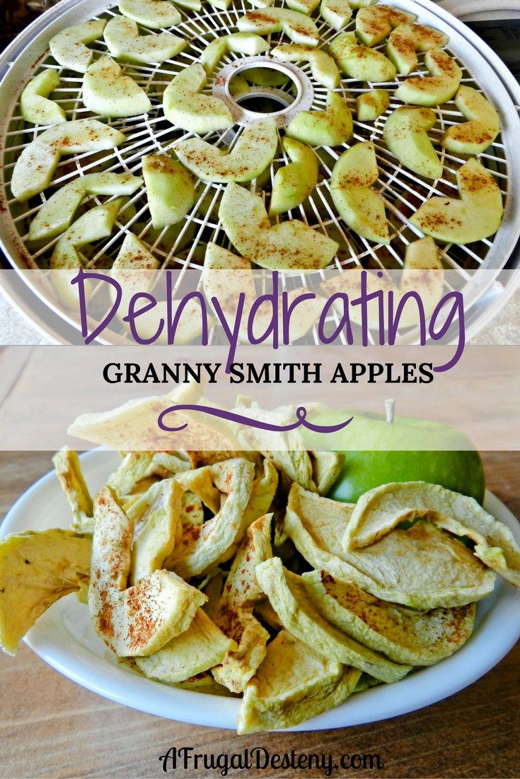 Dried fruit is absolutely delicious, but it's seriously overpriced at the store! Don't waste your money, make dehydrated apples at home!