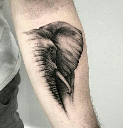 Love elephants!!