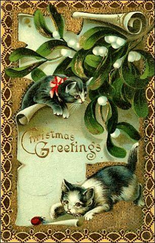 vintage kitten christmas cards  | il ventaglio di piume: Vintage Christmas Cards with cats (prima parte)