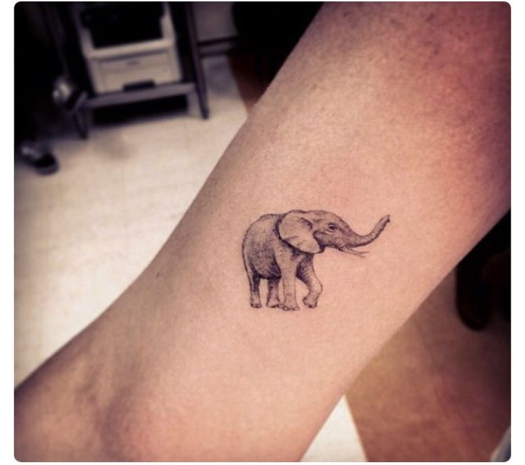 Cute little elephant tattoo