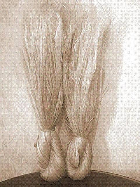 Organic Hemp Fabrics, Fibers, Yarns, Linens