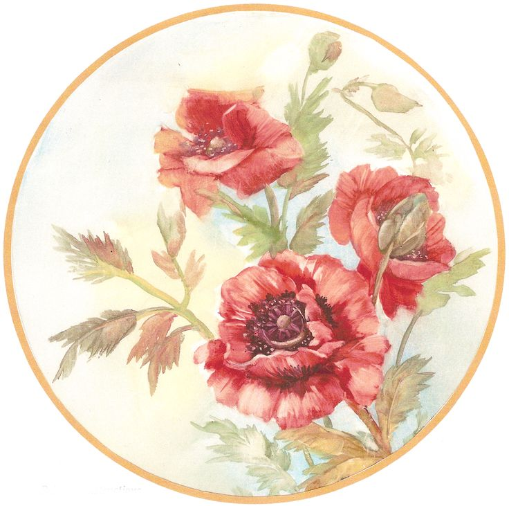 barbara duncan china painter - Google Search