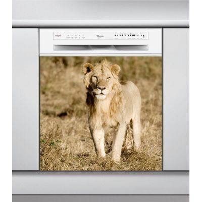Sticker Lave Vaisselle lion, création Imprim'Déco, magasin vente en ligne stickers de décoration