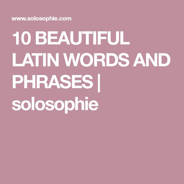 10 BEAUTIFUL LATIN WORDS AND PHRASES   solosophie