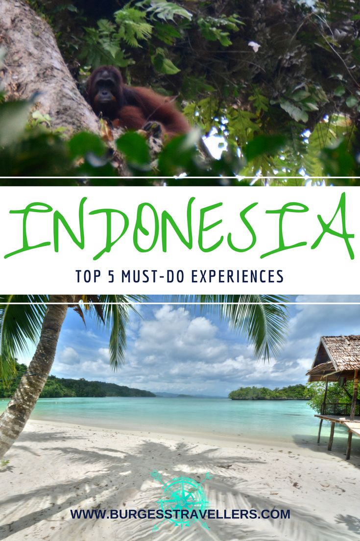 Check out these top 5 incredible Indonesia experiences for the best in culture, adventure & beaches! #indonesia #travelblog #travelgoals #beaches
