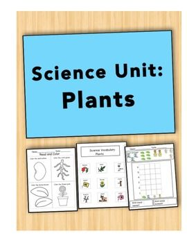 best 25 plant science ideas on pinterest plant parts teaching plants and lifecycle of a plant. Black Bedroom Furniture Sets. Home Design Ideas