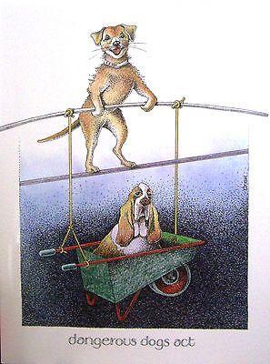 Dangerous Dogs Act - Simon Drew