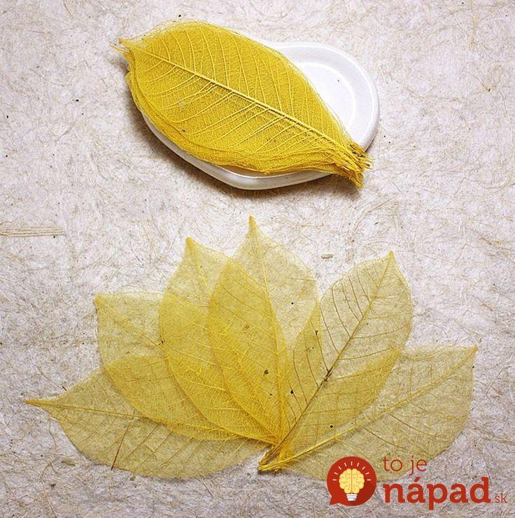 Úžasný nápad, ako vyrobiť z listov nádhernú dekoráciu.