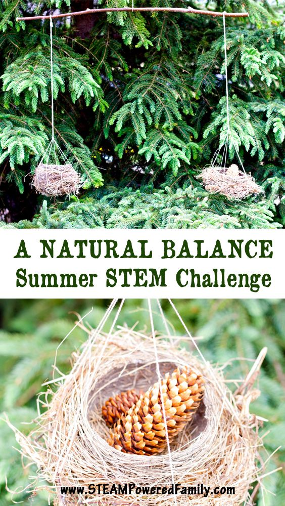 science fun and learning outdoors essay One of the best ways to get young learners excited about study time is to surprise  them with outdoor games and activities students can develop science, math,.