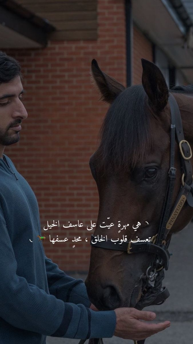 Pin By الم ـغـرومـهه On Horse Horse Senior Pictures Cute Love Images Love Smile Quotes
