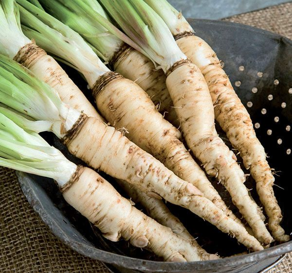 Salsify—Also called the oyster vegetable for its oyster (with hint of artichoke) flavor. Dates back to the 1700s in America. The 6 Best Veggies You've Never Heard Of | Midwest Living