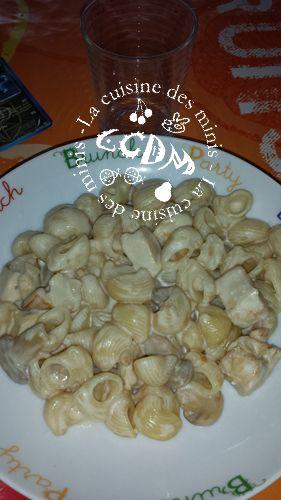3 filets de poulet 1 oignon 1 petites boite de champignons 250g de pâtes fond de volaille eau crème fraiche Je découpe le poulet e...